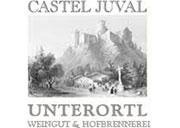 castel-juval-logo